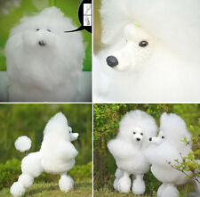 Dog Model, Dog Mannequin + Dog Wig for Show Clip Grooming Practice,Training