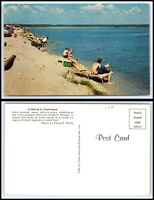 VIRGINIA Postcard - Crabbing At Assateague, Chincoteague Wildlife Refuge Q11