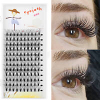 Flare Cluster 20D Pre-fanned Volume Lashes Individual Eyelash Extensions