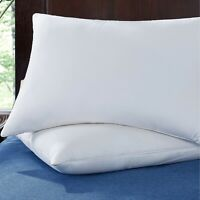 Puredown® 2 Pack Memory Foam Goose Feather Bed Pillows, 100% Cotton Cover