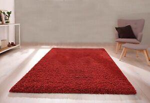 Red Shaggy Rug Non-shed Plain Soft Touch Dense Pile Area Floor Carpet -120x170cm