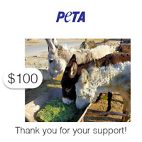 $100 Charitable Donation For: PETA's Vital Work to End Animal Suffering