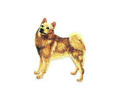 Dog - Finnish Spitz - Pet - Embroidered Iron On Applique Patch - Crafts