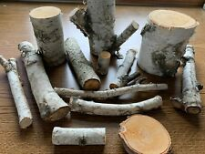 White Birch Pieces, Assorted Sizes, 12 Count