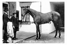 pt9696 - Doncaster , Swynford , Winner of the St Leger - Yorkshire - photograph