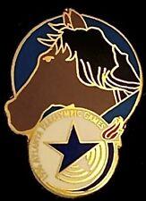 Equestrian Paralympic Pin Badge ~ Atlanta ~ 1996 Olympic  ~ Horse