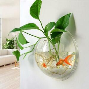 Wall Mounted Goldfish Fish Tank Bowl Bubble Aquarium Hanging Terrarium 15x5cm