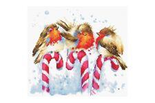 Cross stitch kit Christmas Birds B1154