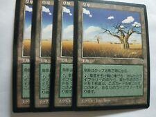MTG 4X JAPANESE MIRAGE GRASSLANDS MINT MAGIC THE GATHERING CARD UNCOMMON LAND