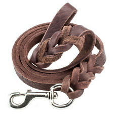 6-Foot Braided Leather Dog Leash