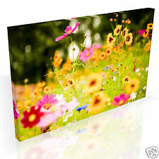 Colourful Wildflower Meadow * Top Quality Box Canvas Ready to Hang * A1 A2 A3