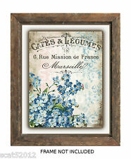 "Wall art print 8"" x 10"" UNFRAMED 325gsm card. Flowers  Vintage French images"