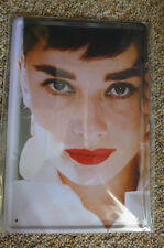 Audrey Herburn Metal Sign Painted Poster Comics Book Superhero Wall Decor Office