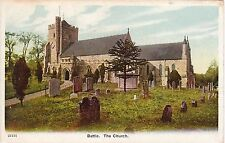 The Church & Monkey Puzzle Tree, BATTLE, Sussex