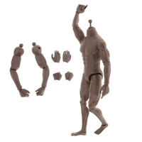 1:6 Scale Skeleton Nude Body Flexible Male Figure Doll Toys Accs Black Skin