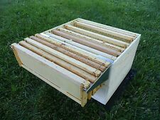 5 Frame Hive Perch Beekeeping Caddy, Bee Frame Holder, Made in & Ships Free USA!