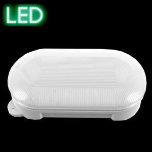 Wandlampe Deckenlampe LED 8W Leuchte IP65 Keller Amatur Schildkröte außen