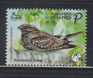BELARUS European Nightjar BIRDS MNH stamp