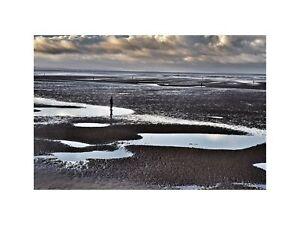 Antony Gormley Statues in Crosby Beach Near Liverpool 2014 Print 60x80cm