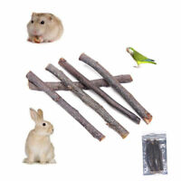 Apple Wood Chew Sticks Twigs For Small Pets Rabbit Teeth Hamster Parrot Toys