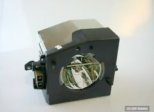 MicroLamp Beamer Lampe für Toshiba 120 Watt, 2.000 Stunden, ML10545, 23311083A