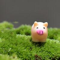 DIY Craft Miniature Fairy Garden Mini Pig Figurine Ornament Bonsai Beauty Set