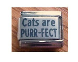 9mm  Classic Size Italian Charms L38  Perfect Cat Cats are PURR-FECT