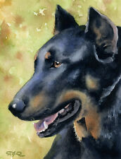 """Beauceron"" Watercolor Dog ART Print Signed by Artist DJR"