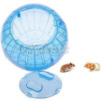 Haustier Nagetier Mäuse Jogging Hamster Rat Spiel Plastik Übung Ball Spielzeug