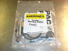 P391K2, Enerpac Oem Repair Kit, For P-391 & P-392 Hand Pumps