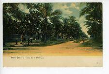 Verazcruz—Avenida de la Libertad—Antique UDB Rare STAMPS TO USA 1906