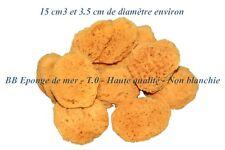 10X BB Eponges de mer 100%  naturelles T.0 - Haute qualité 💙💙
