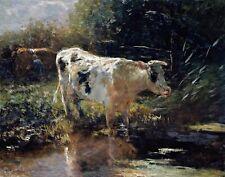 Cow in a Ditch by Dutch  Willem Maris. Animals .  11x14 Print