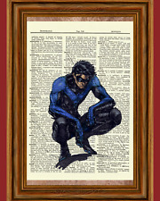 NIghtwing Dictionary Art Poster Picture Comic Book Marvel DC Superhero Gift