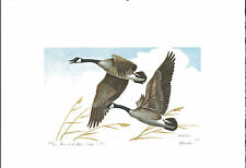 Iowa #4 1975 State Duck Stamp Print Canada Geese by Mark Reece
