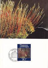 Liechtenstein 1981 muschi e licheni carta massimo impostato in buonissima condizione