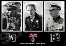 aviation art military Jochen Pieper Liebstandarte Panther Tiger tank