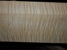 """7/4 SUPER CURLY TIGER MAPLE   lumber 42"""" x 5"""" x 1 3/4"""""""