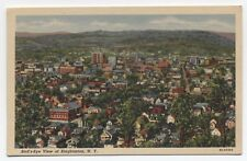 NY ~ Bird's Eye View BINGHAMTON New York c1940's Broome County Local Publisher