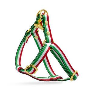 Dog Step In Harness Adjustable Italian Italy Flag Leash Set Gold Metal Hardware