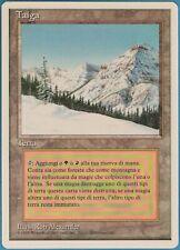 Taiga (WB) Revised (ITALIAN) NM Land Rare MAGIC MTG CARD (ID# 105402) ABUGames