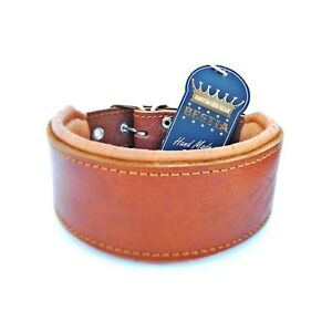 Bestia leather dog collar with soft leather cushion. Hand Made.  M- XXL sizes