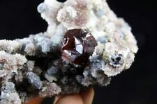 Gem Wine Red Sphalerite crystal on Quartz Mineral Specimen China CM700866