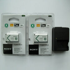 2x NP-BX1 Battery & BC-CSXB Charger For Sony DSC-RX100 RX1 AS15 AS10 HX300 WX300