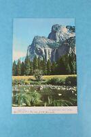 VINTAGE 1958 PINE CONE SOUVENIR RESTAURANT DINNER MENU MERCED, CALIFORNIA