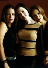Charmed Cast Poster Milano Combs Mcgowan24in x 36in