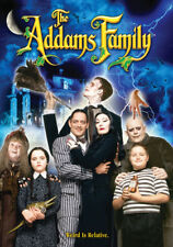The Addams Family (DVD,1991)