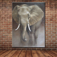 ZOPT24 100% hand painted ABSTRACT CANVAS WALL ART Elephant animal OIL PAINTING