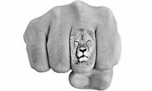 3 Temporary Tattoo Cecil the Lion Finger Tattoos Endangered Animal