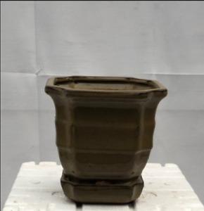 "Olive Green Ceramic Bonsai Pot Square With Humidity/Drip Tray 5.5"" x 5.5"" x 5.5"""